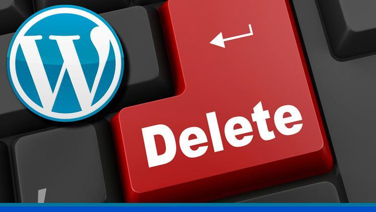 Cómo borrar un WordPress en un solo clic