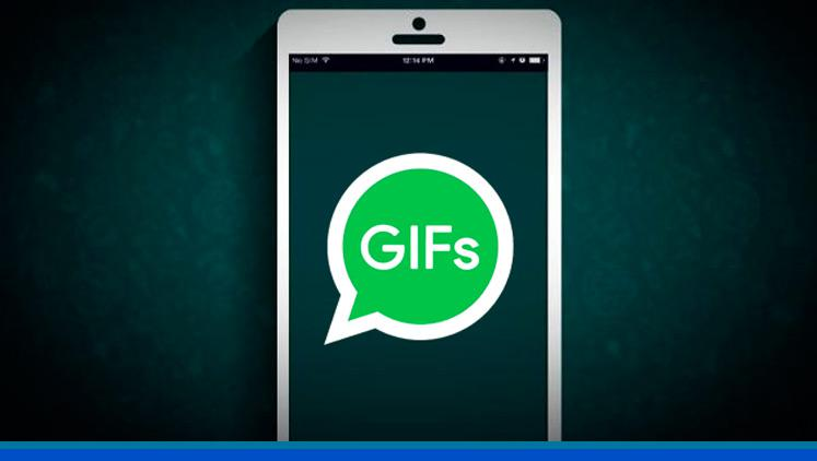 Cómo mandar GIFS en WhatsApp y otras de las novedades